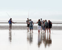 img: Daintree Dreaming Day Tour