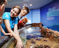 img: Sea Life Mooloolaba is the place to go for the ultimate underwater experience. Get face to face with a shark, visit the locals at seal cove and encounter beautiful tropical fish all without getting your feet wet. And with daily return departures from Noosa, why wouldn't you go?
