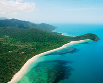 img: Go Wild Cape Tribulation Day Tour - Depart Cairns