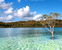 img: Fraser Island 4WD Palace Tag-a-long Tour  - 3D/2N
