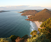 img: Port Stephens day trip combo - Dolphin Cruise & 4WD sandboarding