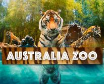 img: Australia Zoo Entry