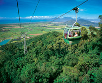 img: Skyrail Rainforest Cableway Cairns