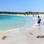 Kangaroo Island_Beach