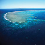 Great Barrier Reef Osprey Day Tour - Reef Waters
