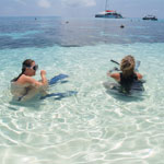 Great Barrier Reef Day Tour - Passions of Paradise