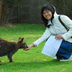 Phillip Island Penguin Tour - Kangaroo Feeding
