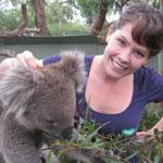 Phillip Island Penguin Tour - Meet a Koala