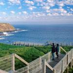 Phillip Island Penguin Tour - Nobbies View