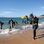Townsville Magnetic Island - Diving