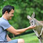 Australia Zoo Entry - Kangaroo Feeding