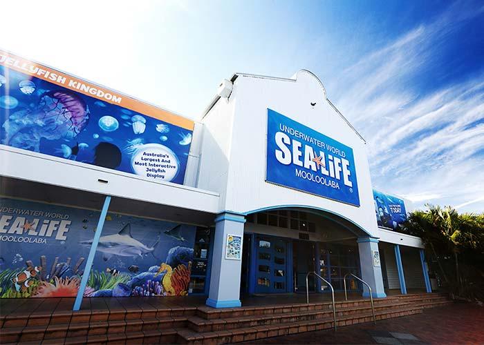 Sea Life Mooloolaba