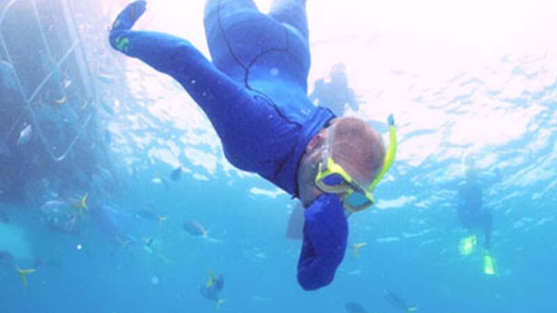 snorkeller underwater