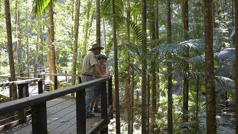 Wangoolba Creek boardwalk