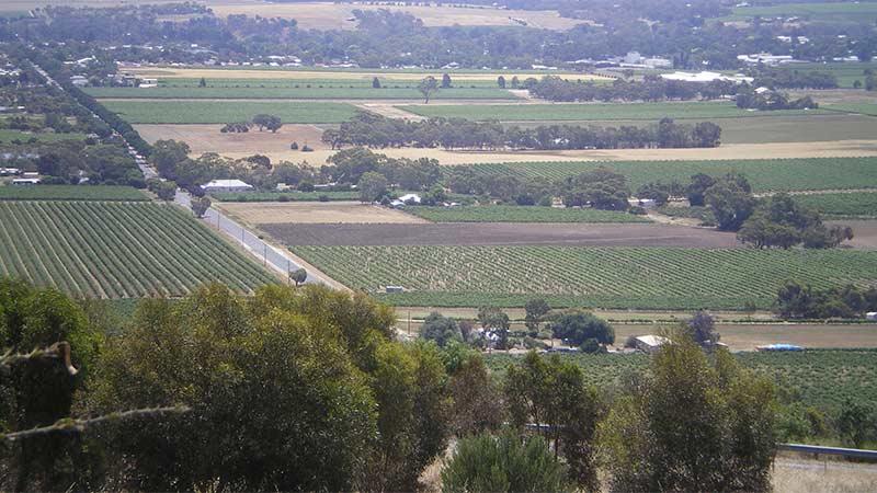 Menglers Hill