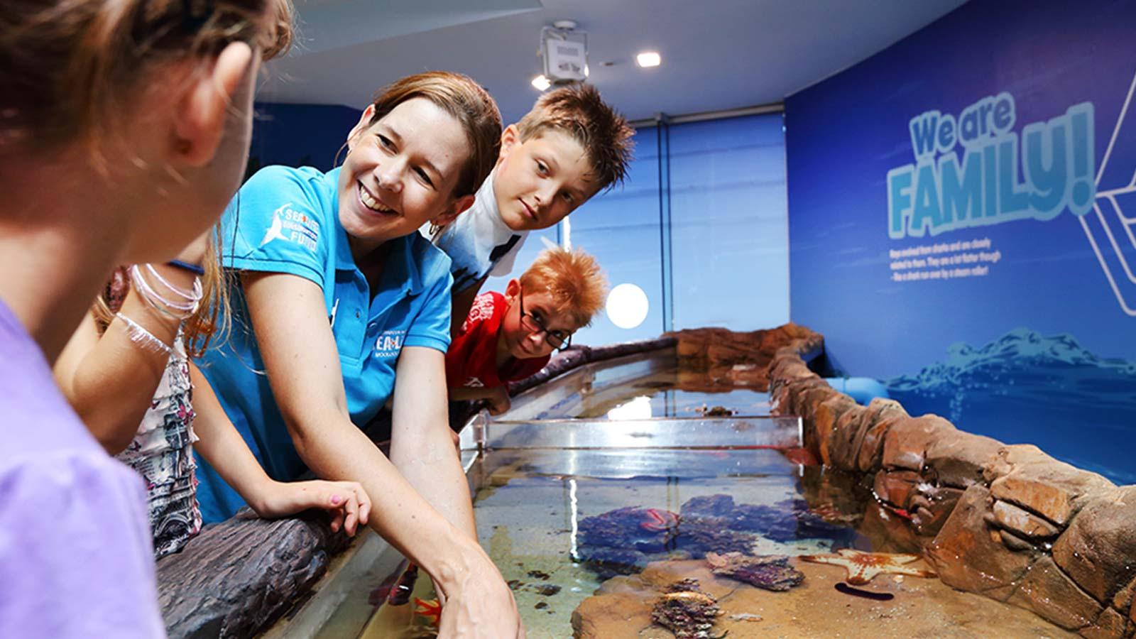 Touch tank