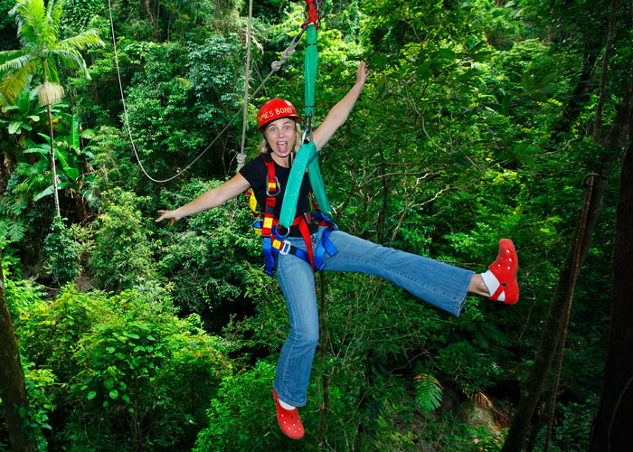 Jungle tour zipline