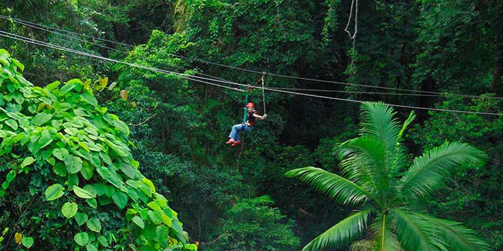 Girl zipping through the jungle