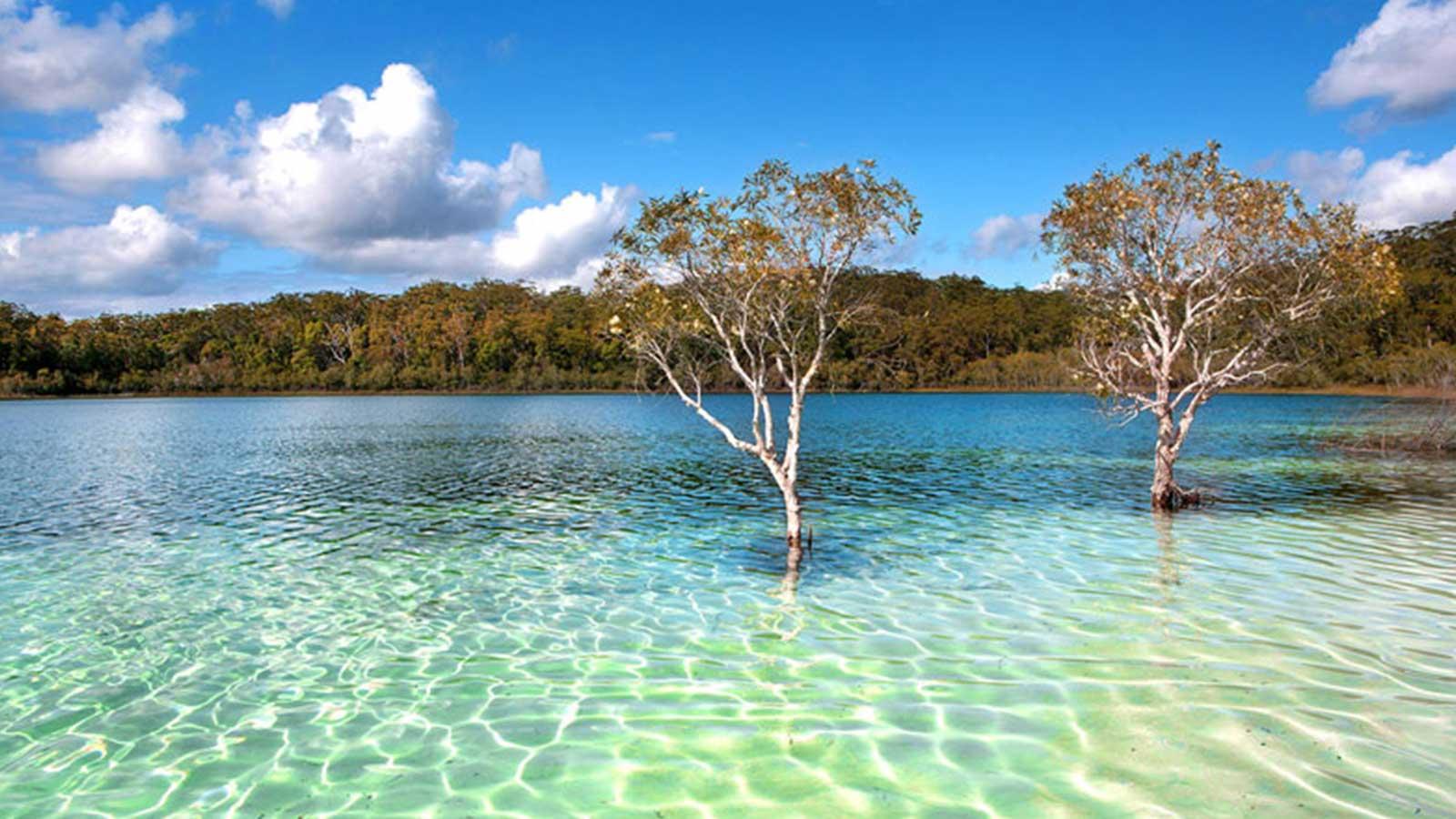 Western Fraser Island beach