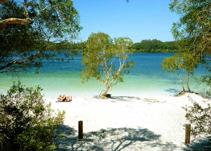 Fraser Island 4WD Experience