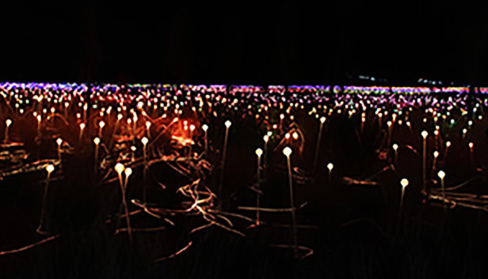 Uluru and Field of Light ex Adelaide